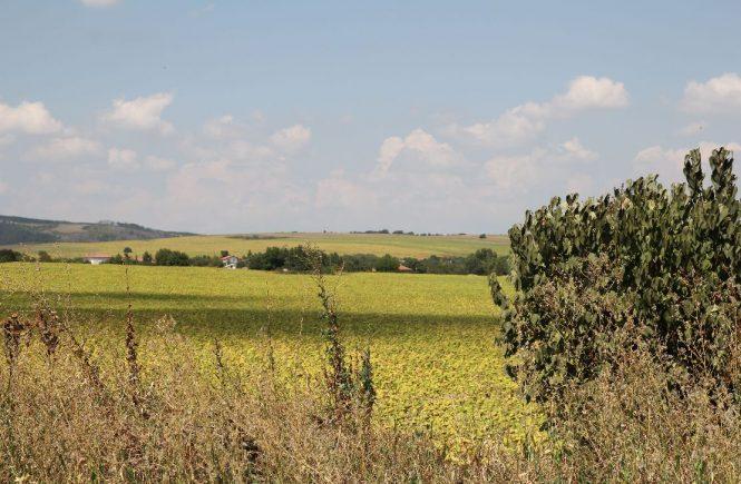Българско-село